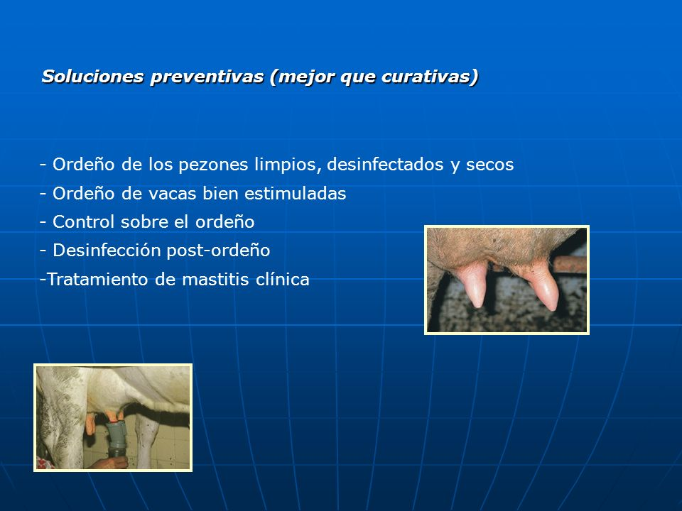 Soluciones preventivas (mejor que curativas)
