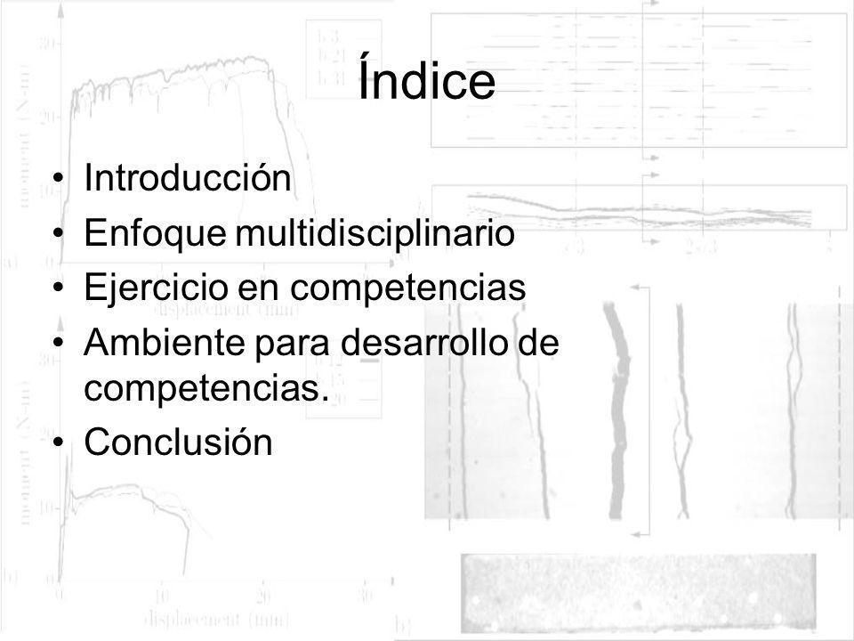 Índice Introducción Enfoque multidisciplinario