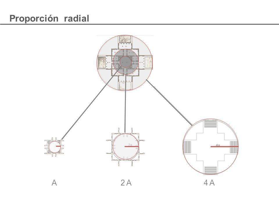 Proporción radial A 2 A 4 A