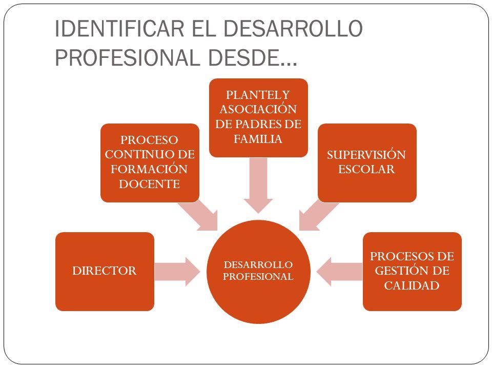 IDENTIFICAR EL DESARROLLO PROFESIONAL DESDE…