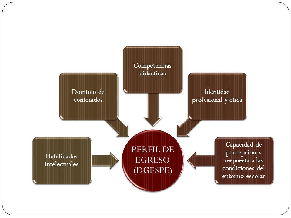 PERFIL DE EGRESO (DGESPE)