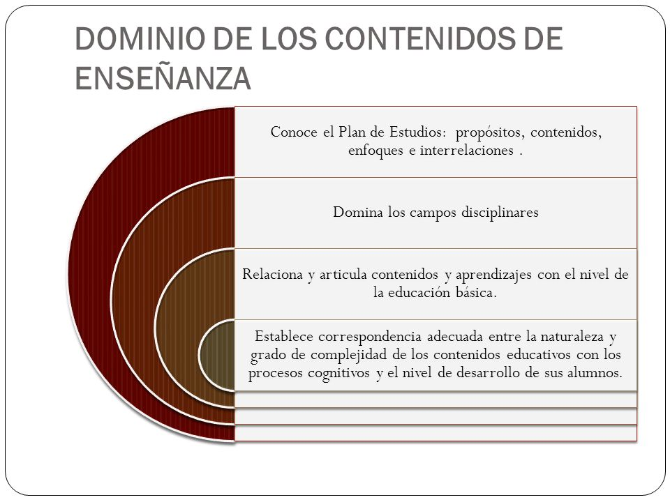 DOMINIO DE LOS CONTENIDOS DE ENSEÑANZA
