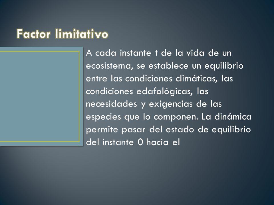 Factor limitativo