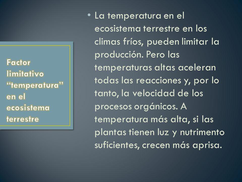 Factor limitativo temperatura en el ecosistema terrestre