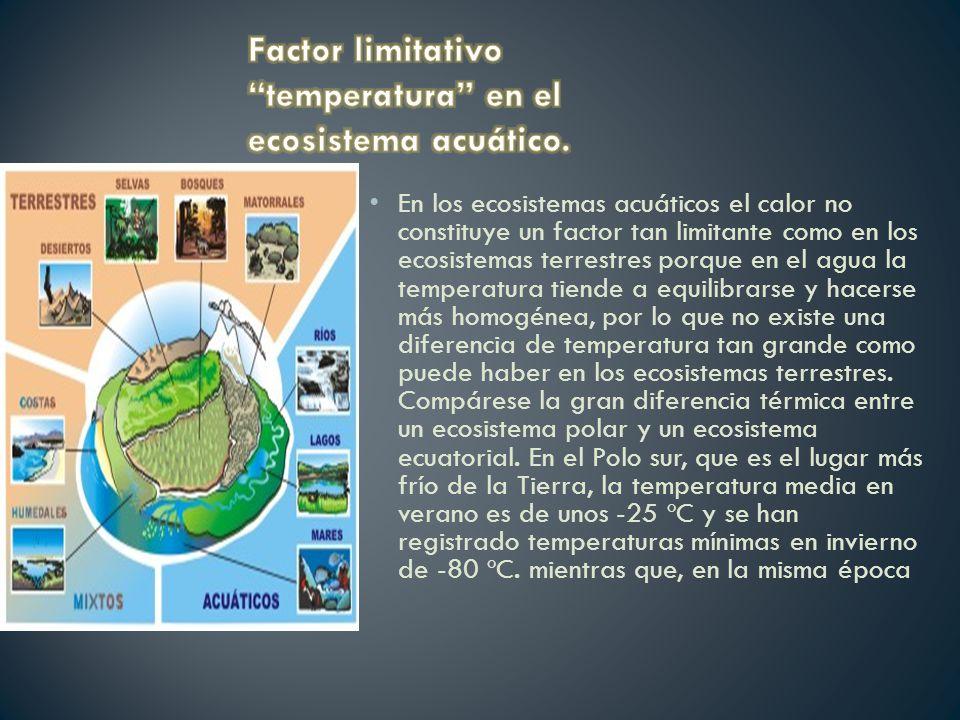 Factor limitativo temperatura en el ecosistema acuático.