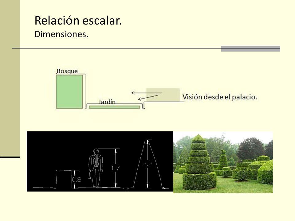 Relación escalar. Dimensiones.