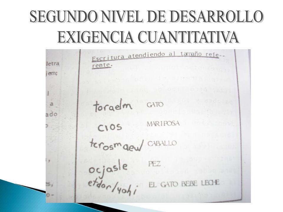 SEGUNDO NIVEL DE DESARROLLO EXIGENCIA CUANTITATIVA