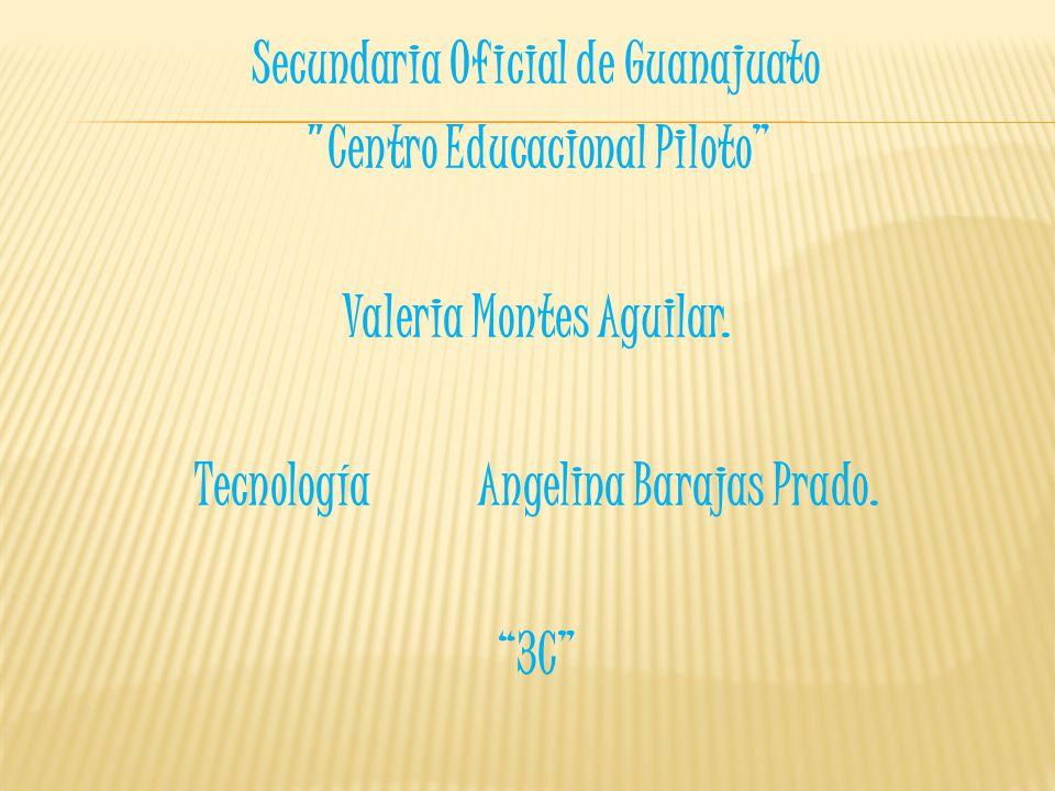 Secundaria Oficial de Guanajuato Centro Educacional Piloto Valeria Montes Aguilar.