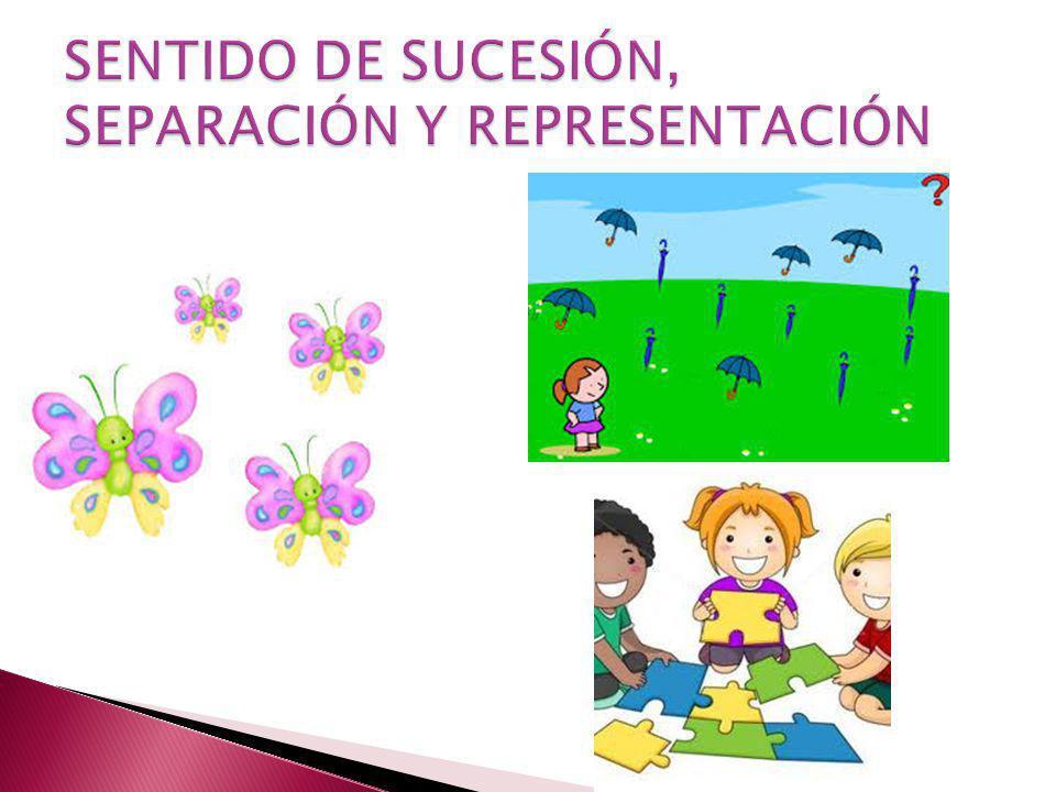 SENTIDO DE SUCESIÓN, SEPARACIÓN Y REPRESENTACIÓN