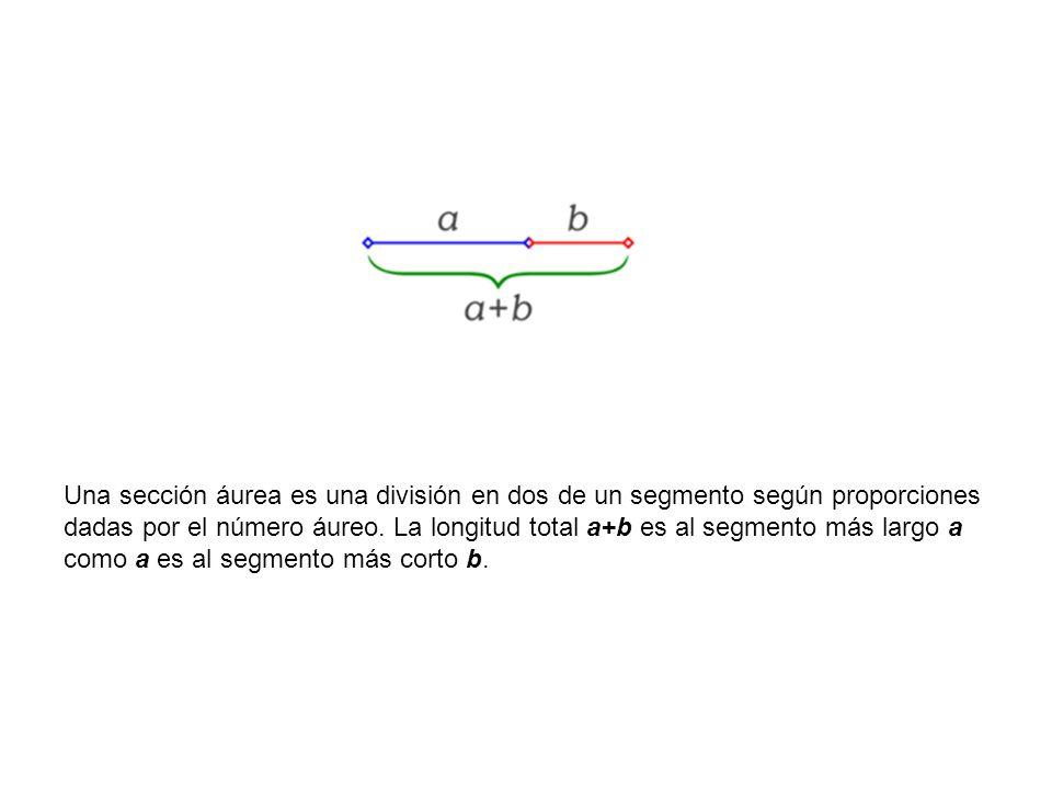 Una sección áurea es una división en dos de un segmento según proporciones dadas por el número áureo.