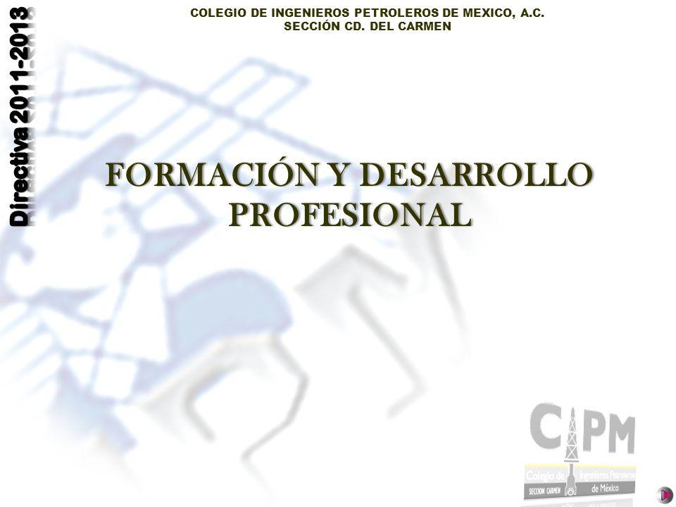 FORMACIÓN Y DESARROLLO PROFESIONAL