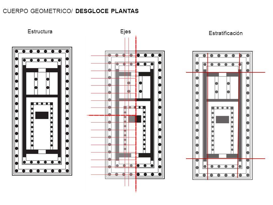 CUERPO GEOMETRICO/ DESGLOCE PLANTAS