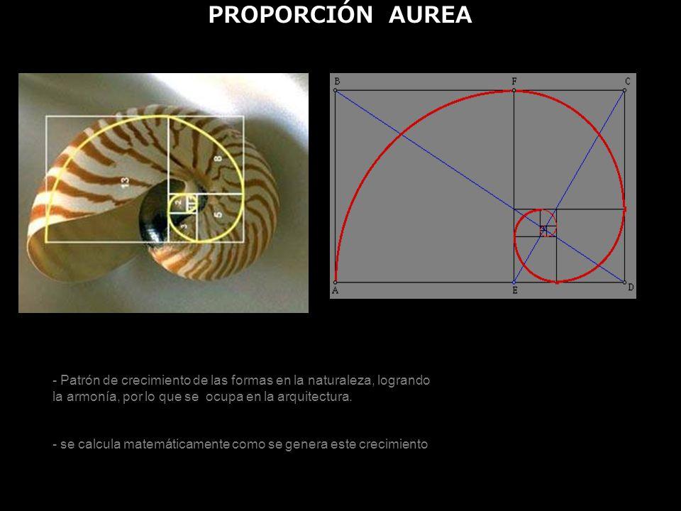 PROPORCIÓN AUREA - Patrón de crecimiento de las formas en la naturaleza, logrando la armonía, por lo que se ocupa en la arquitectura.
