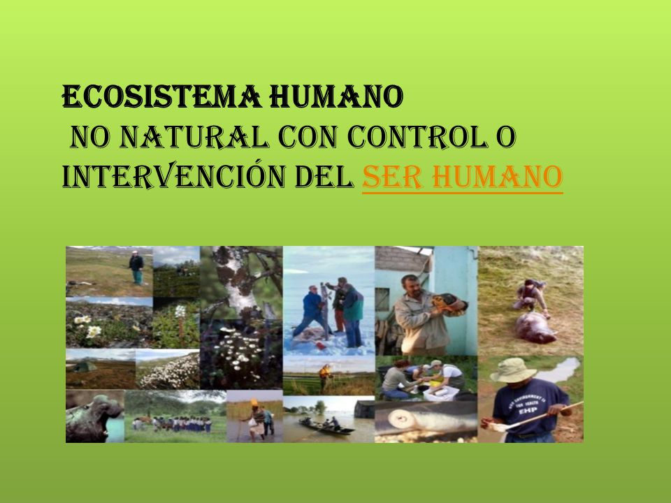Ecosistema humano no natural con control o intervención del ser humano