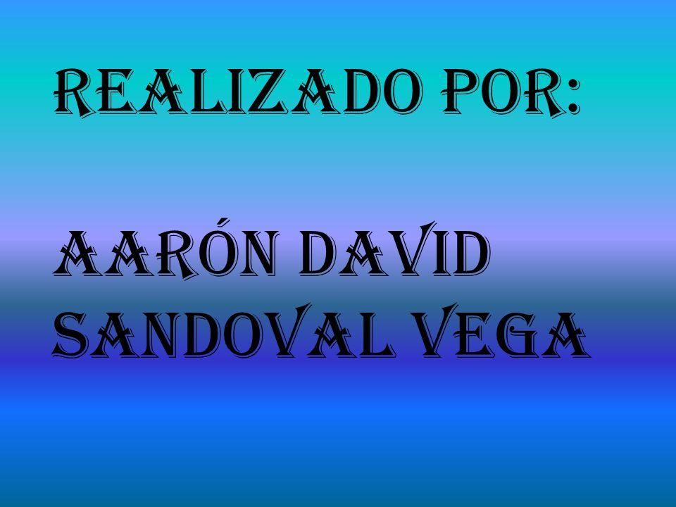 Realizado Por: Aarón David Sandoval Vega