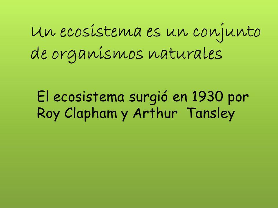 Un ecosistema es un conjunto de organismos naturales