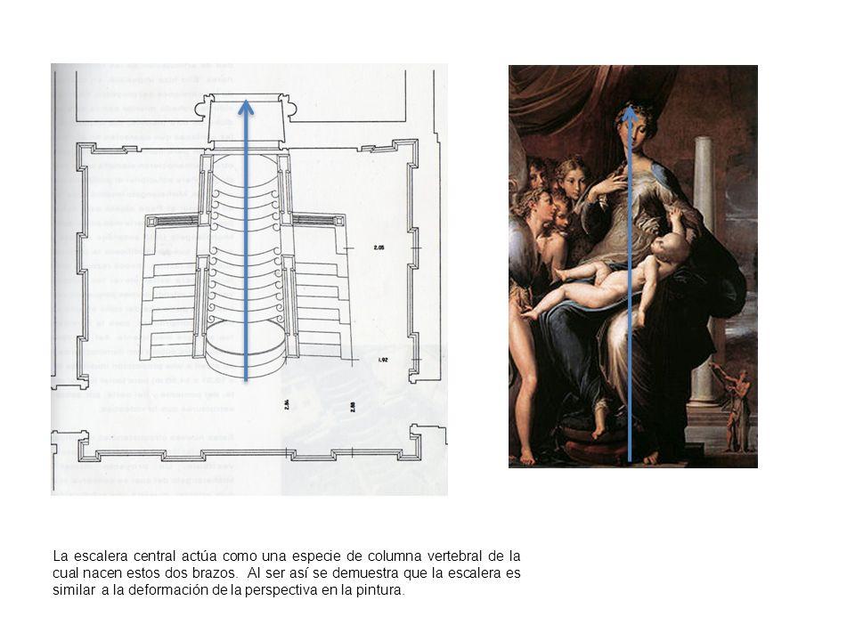 La escalera central actúa como una especie de columna vertebral de la cual nacen estos dos brazos.