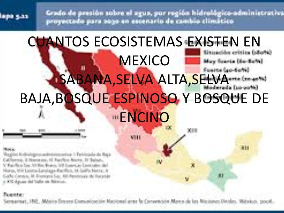 CUANTOS ECOSISTEMAS EXISTEN EN MEXICO SABANA,SELVA ALTA,SELVA BAJA,BOSQUE ESPINOSO Y BOSQUE DE ENCINO