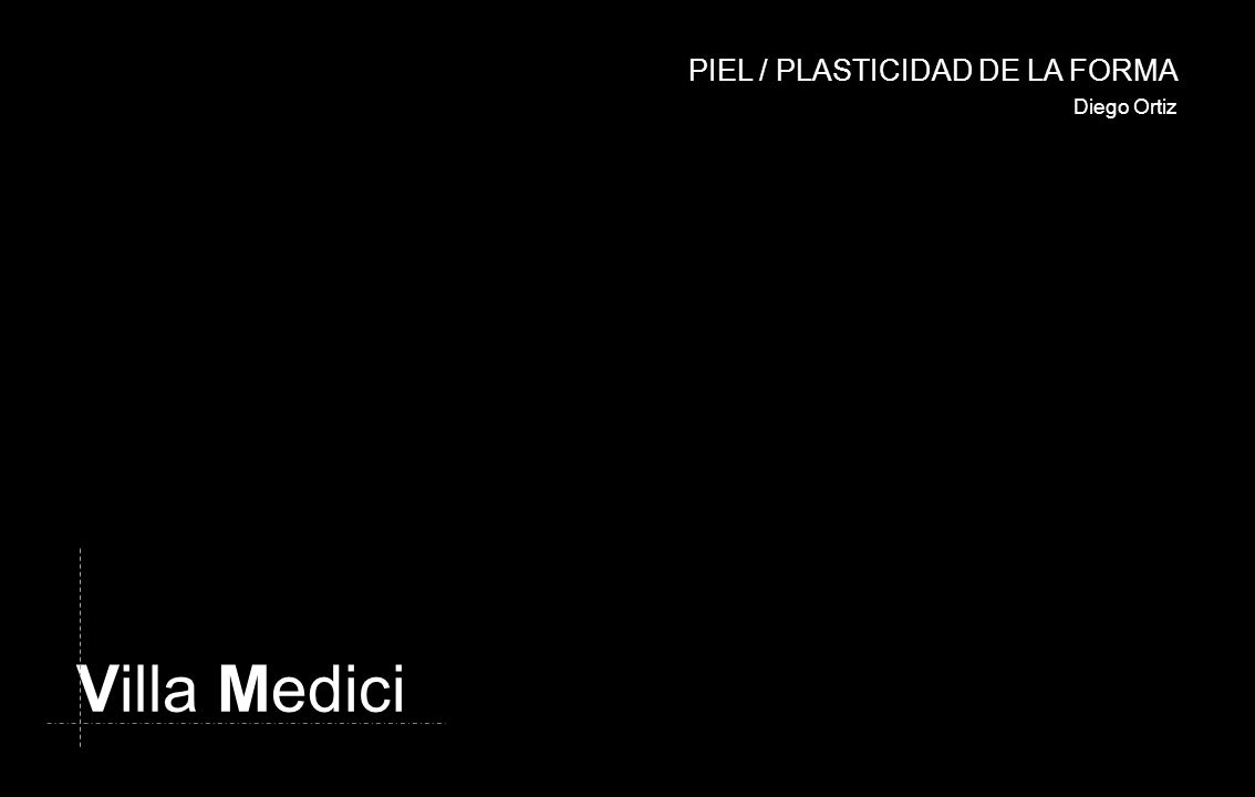 PIEL / PLASTICIDAD DE LA FORMA