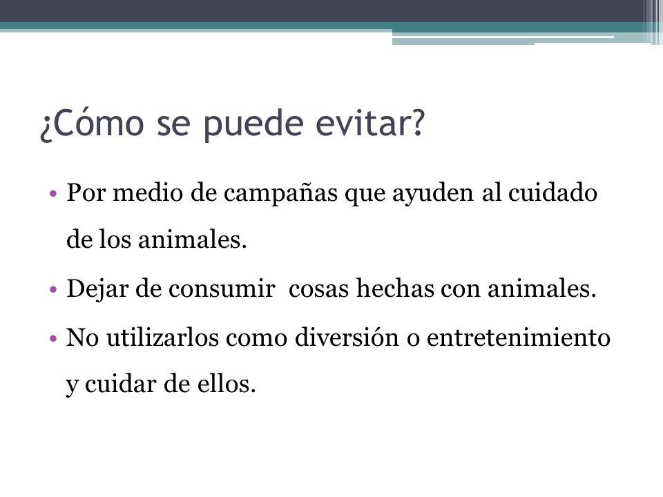 ¿Cómo se puede evitar Por medio de campañas que ayuden al cuidado de los animales. Dejar de consumir cosas hechas con animales.