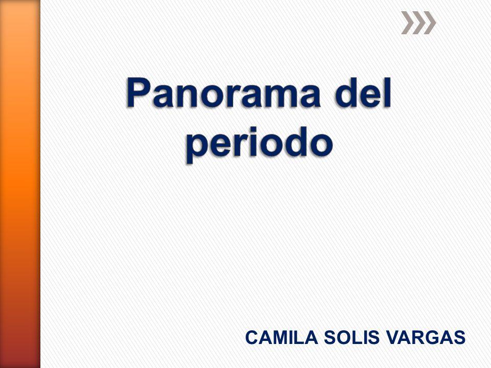 Panorama del periodo CAMILA SOLIS VARGAS
