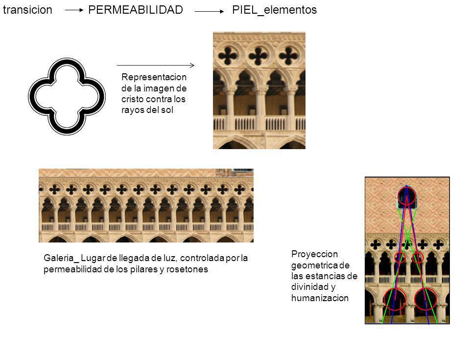 transicion PERMEABILIDAD PIEL_elementos