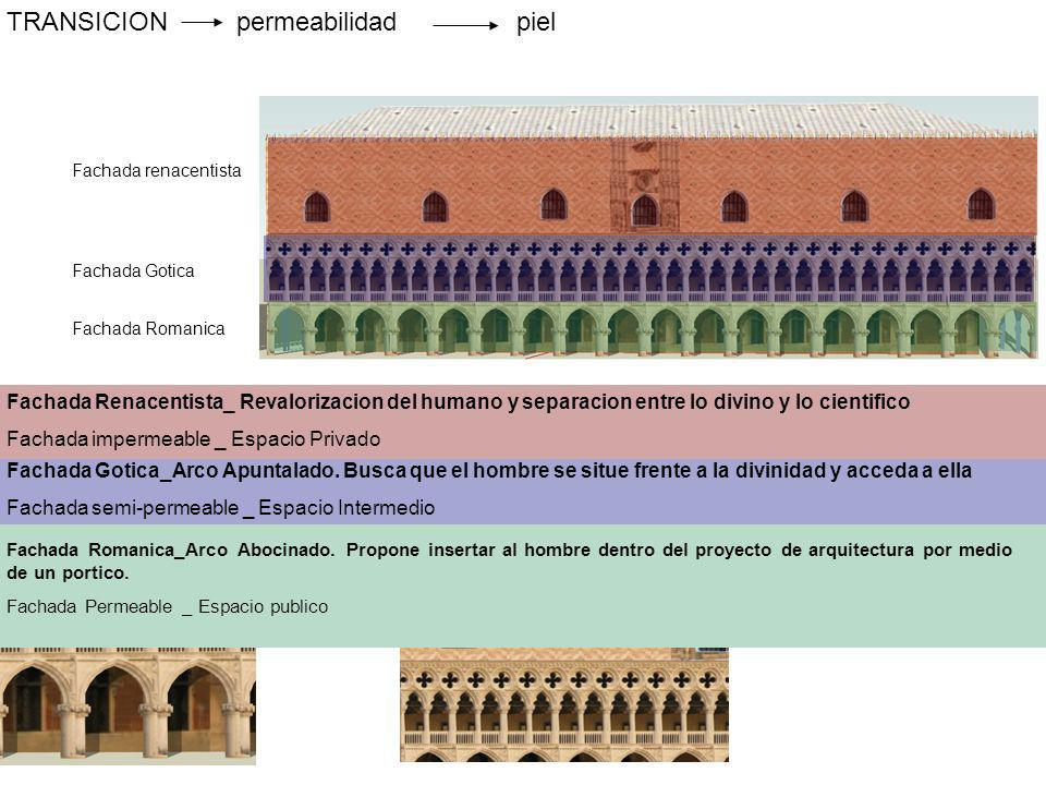 TRANSICION permeabilidad piel
