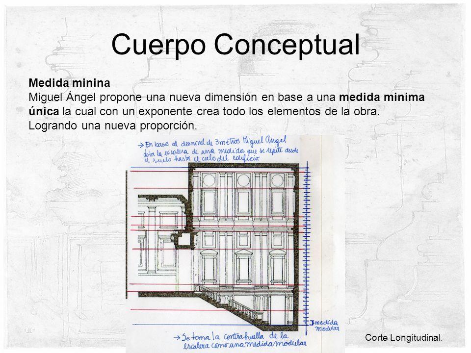 Cuerpo Conceptual Medida minina