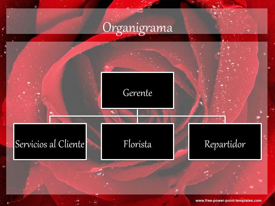 Organigrama Gerente Servicios al Cliente Florista Repartidor