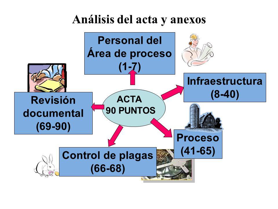 Análisis del acta y anexos