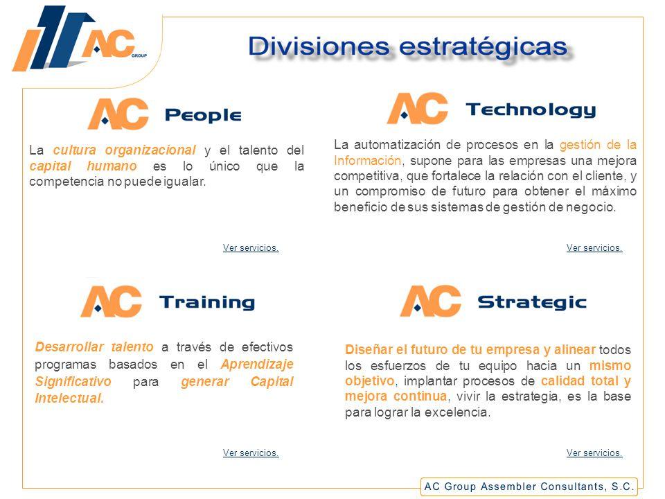 Divisiones estratégicas
