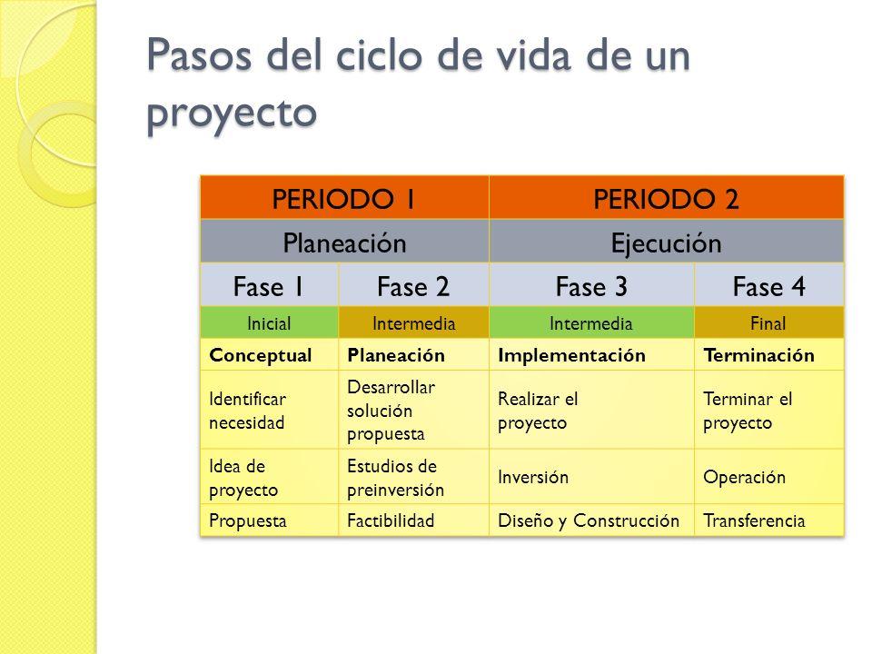 Pasos del ciclo de vida de un proyecto