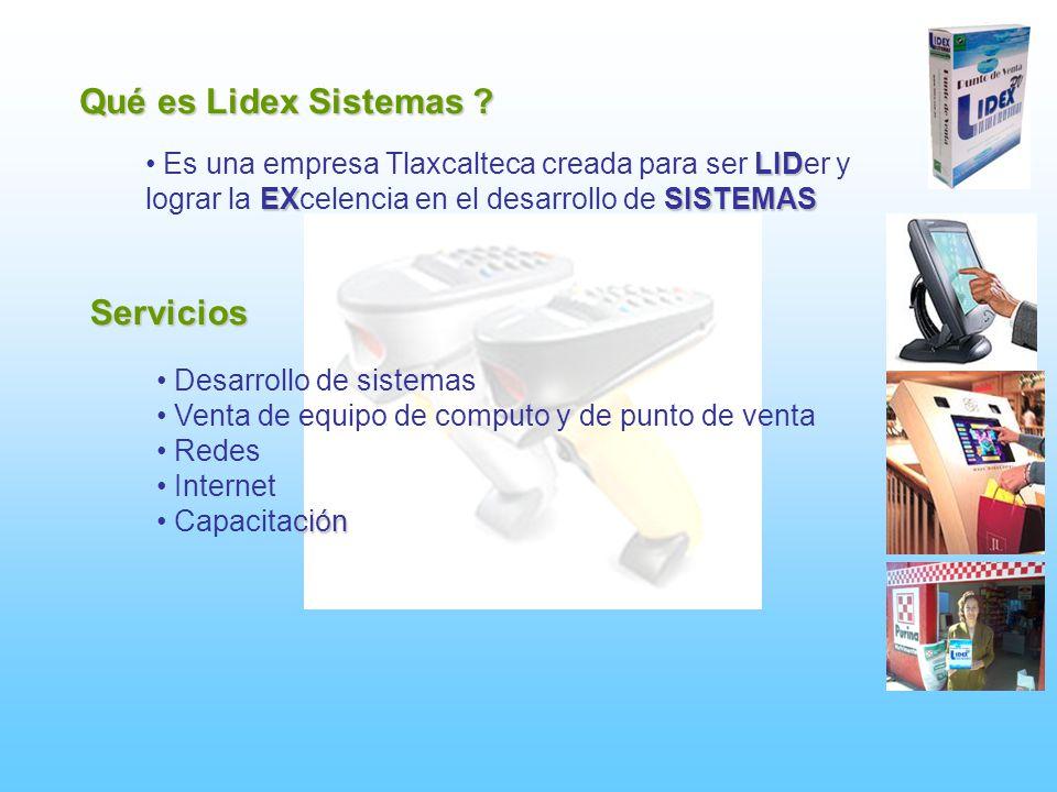 Qué es Lidex Sistemas Servicios