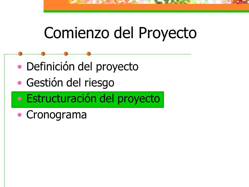 Comienzo del Proyecto Definición del proyecto Gestión del riesgo