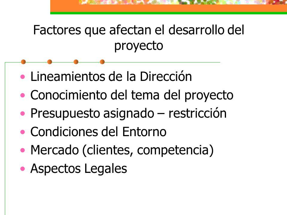 Factores que afectan el desarrollo del proyecto