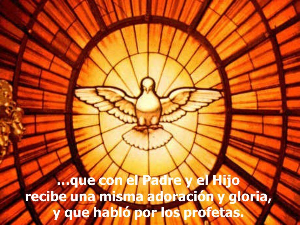 …que con el Padre y el Hijo recibe una misma adoración y gloria,