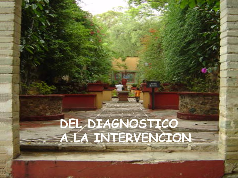 DEL DIAGNOSTICO A LA INTERVENCION
