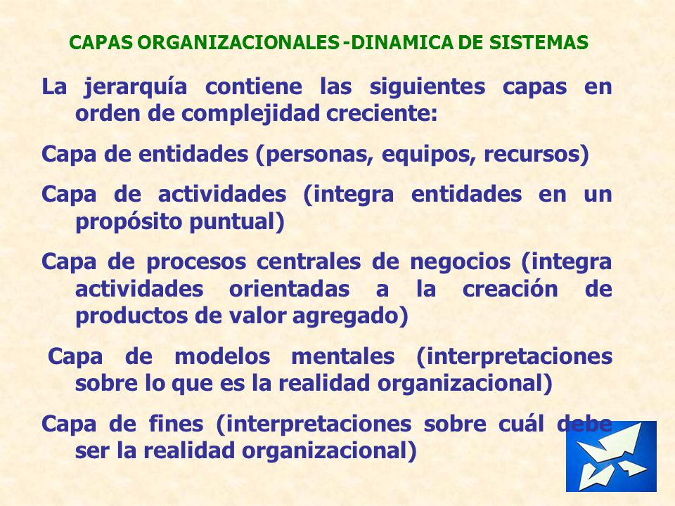 CAPAS ORGANIZACIONALES -DINAMICA DE SISTEMAS