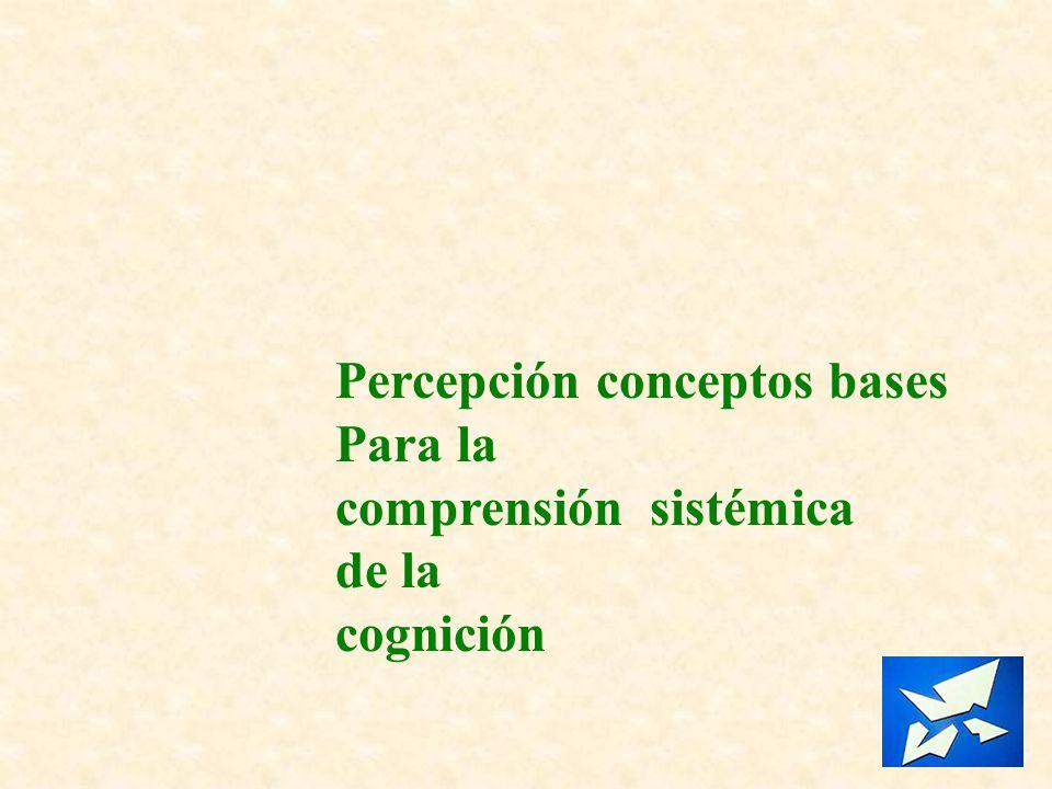 Percepción conceptos bases