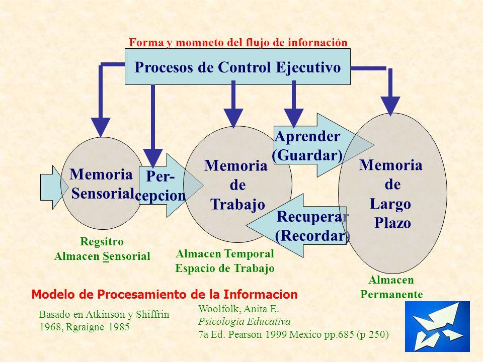 Forma y momneto del flujo de infornación