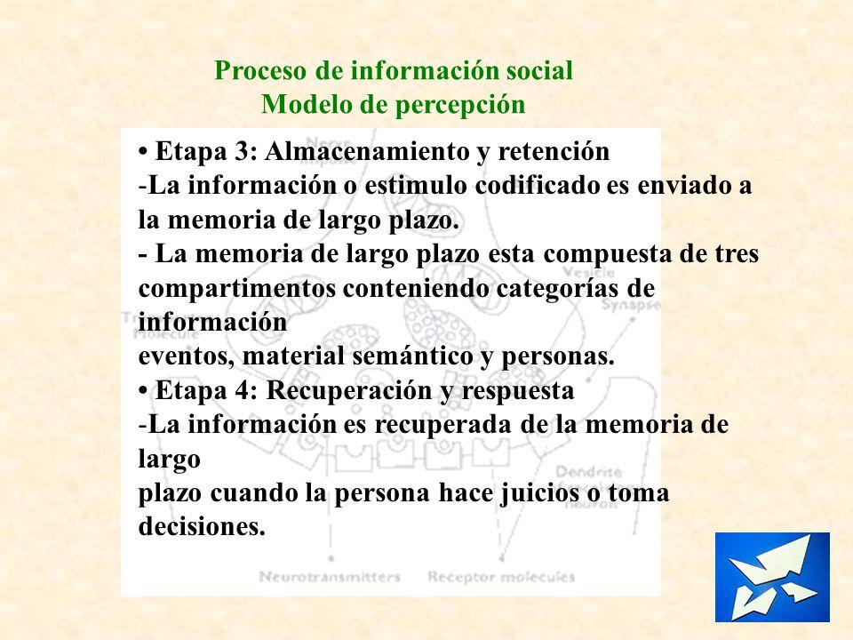 Proceso de información social