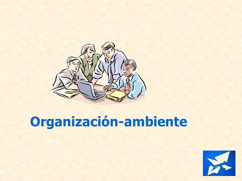 Organización-ambiente