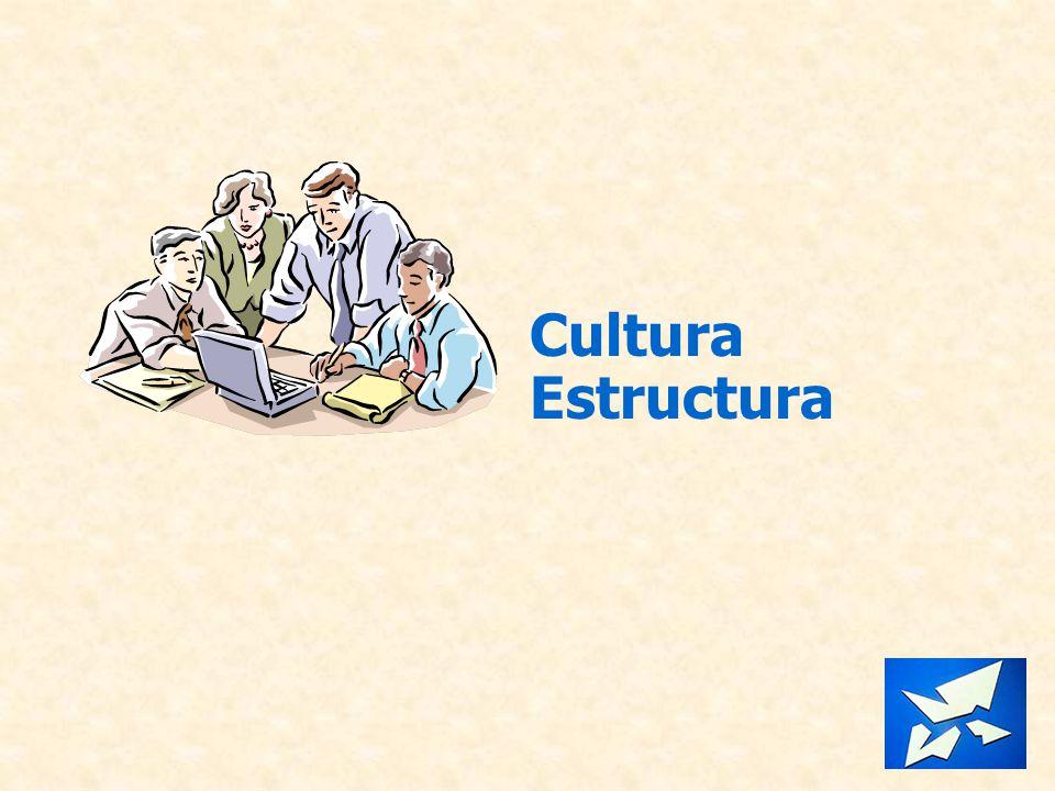 Cultura Estructura