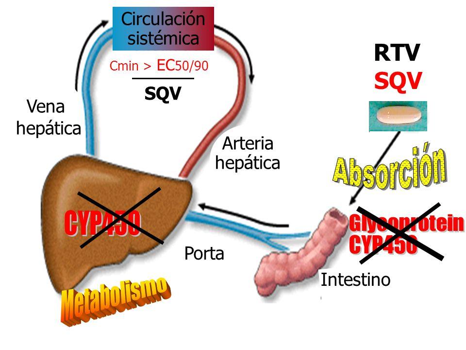 Circulación sistémica