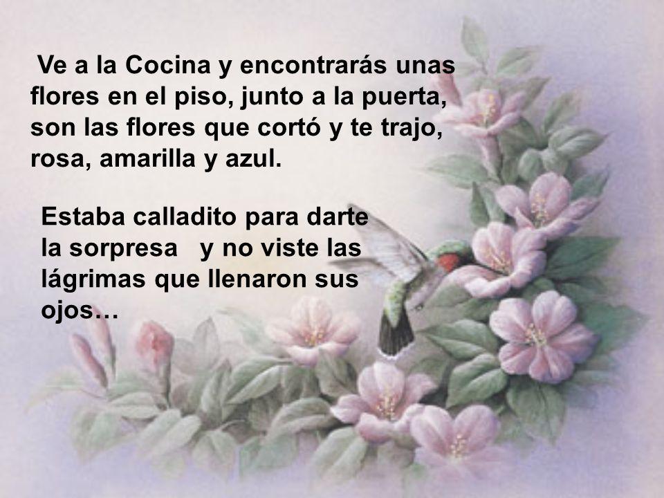 Ve a la Cocina y encontrarás unas flores en el piso, junto a la puerta, son las flores que cortó y te trajo, rosa, amarilla y azul.
