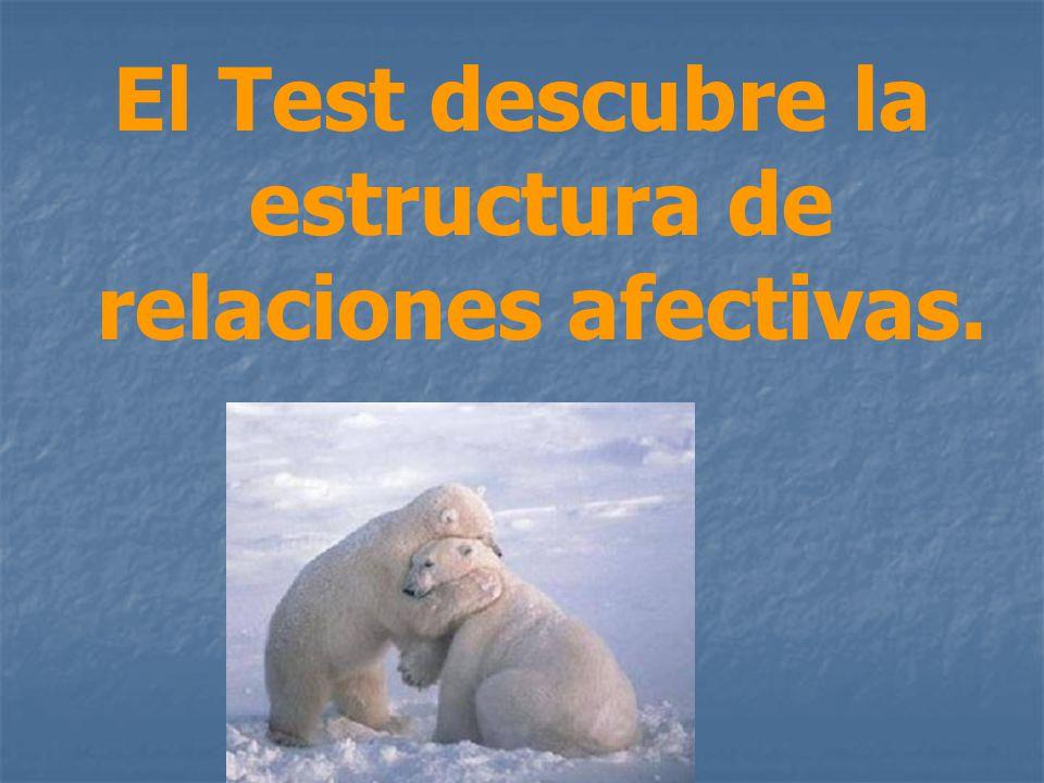 El Test descubre la estructura de relaciones afectivas.