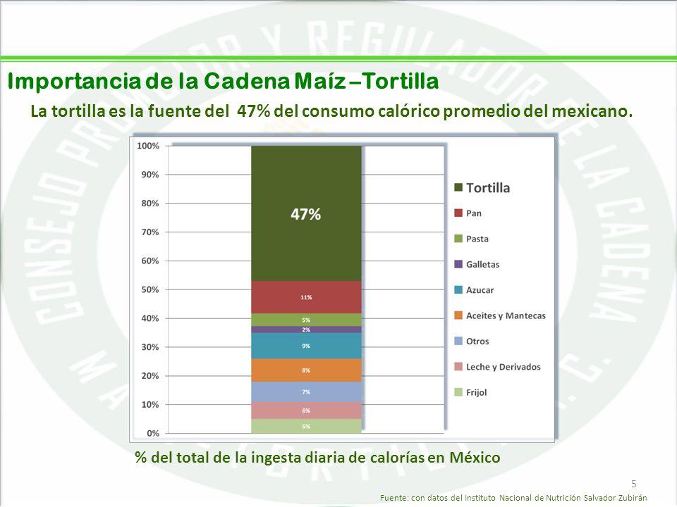 Importancia de la Cadena Maíz –Tortilla