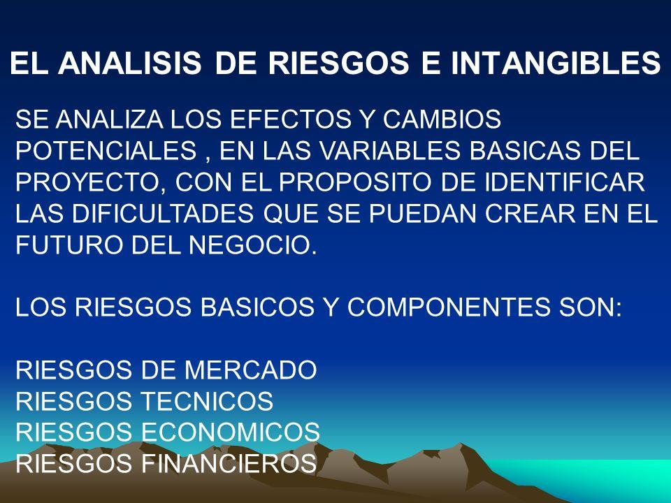 EL ANALISIS DE RIESGOS E INTANGIBLES