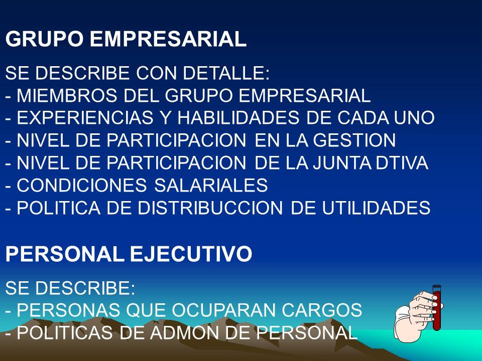 GRUPO EMPRESARIAL PERSONAL EJECUTIVO SE DESCRIBE CON DETALLE: