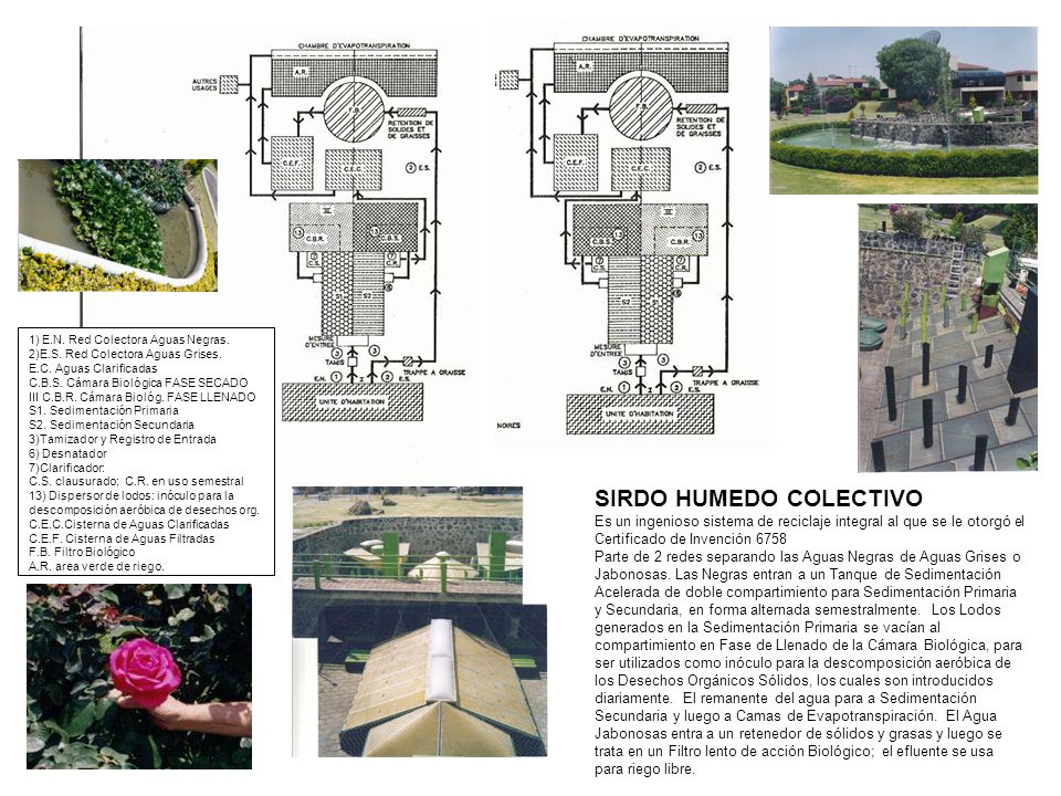 SIRDO HUMEDO COLECTIVO